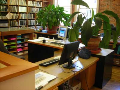 Health Benefits Of Office Plants