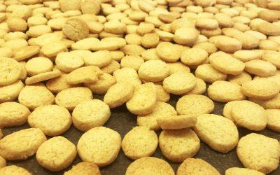 Kammerjunker/småkager (til koldskål og meget andet)