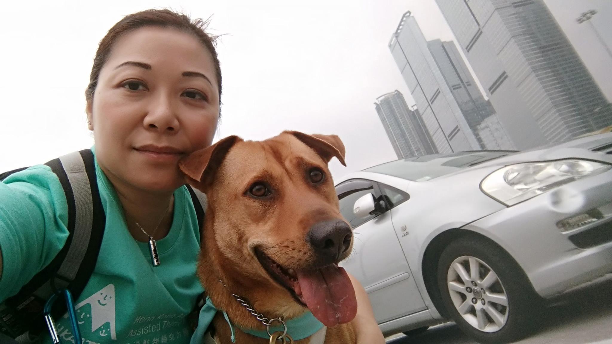 唐狗會創辦人:流浪唐狗更乖更有禮貌 - 香港動物報 Hong Kong Animal Post