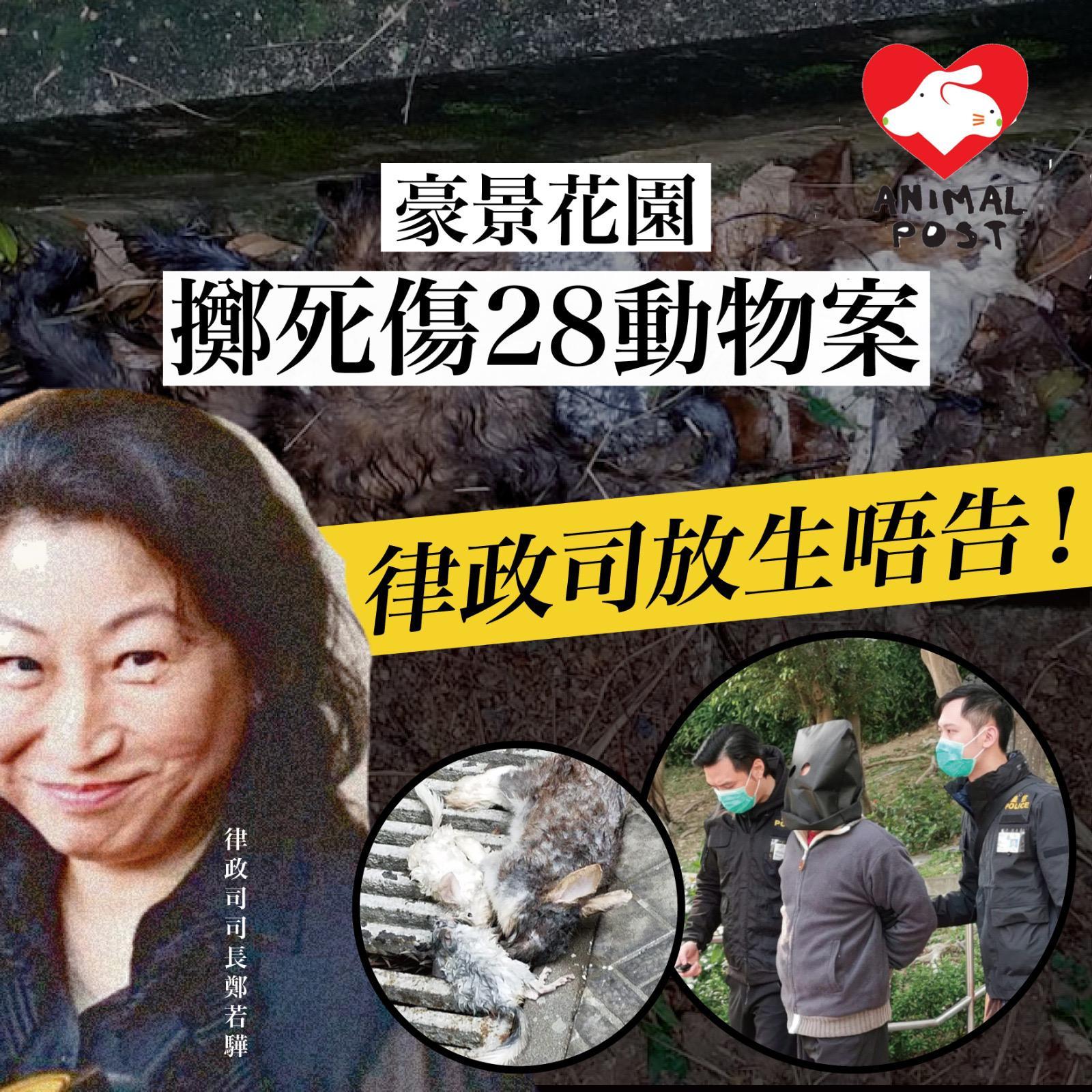 憤怒! 豪景花園丟動物落樓案釀30死傷 律政司放生被告不起訴   香港動物報 Hong Kong Animal Post