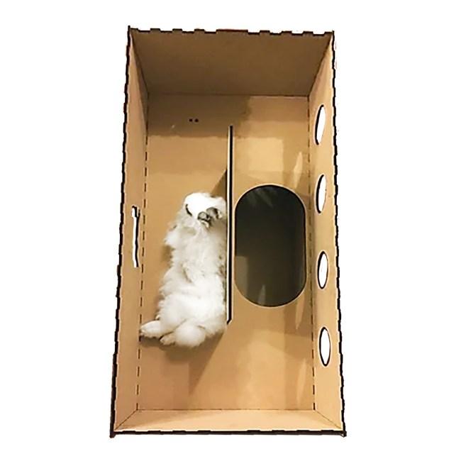 Run Rabbit!兔跑拋木作屋 雙層隧道(公價貨品)