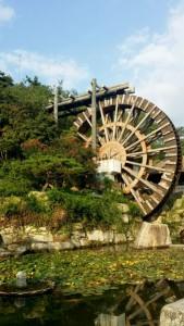 (27)拍攝者:何倩雲 相片標題: 巨輪
