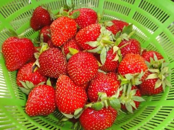Erdbeermarmelade1