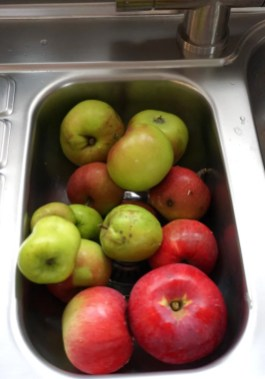 ApplePie6