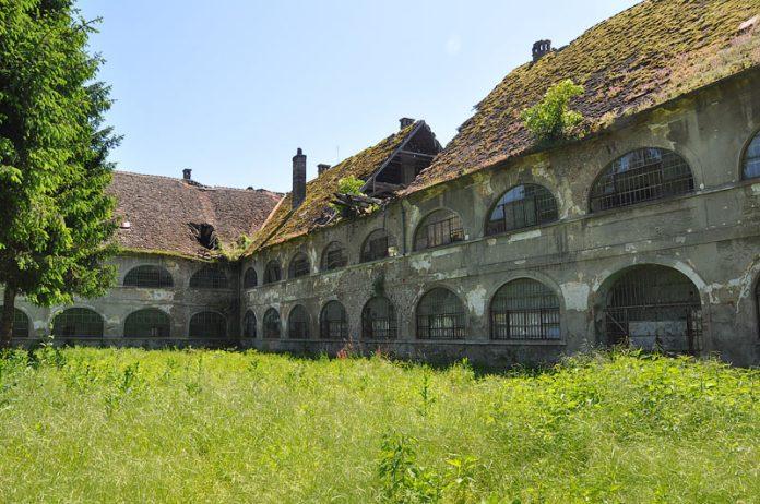 Srpski logor Stara Gradiška