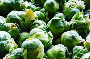 brussels_sprout_health_benefits_660x330