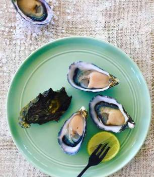 oysters-vitamin-d