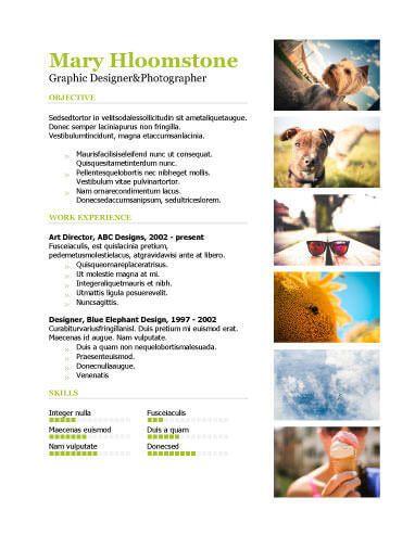 10 Portfolio Resume Templates Free Download