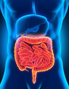 腸胃檢查 (由腸胃肝臟科專科醫生負責)