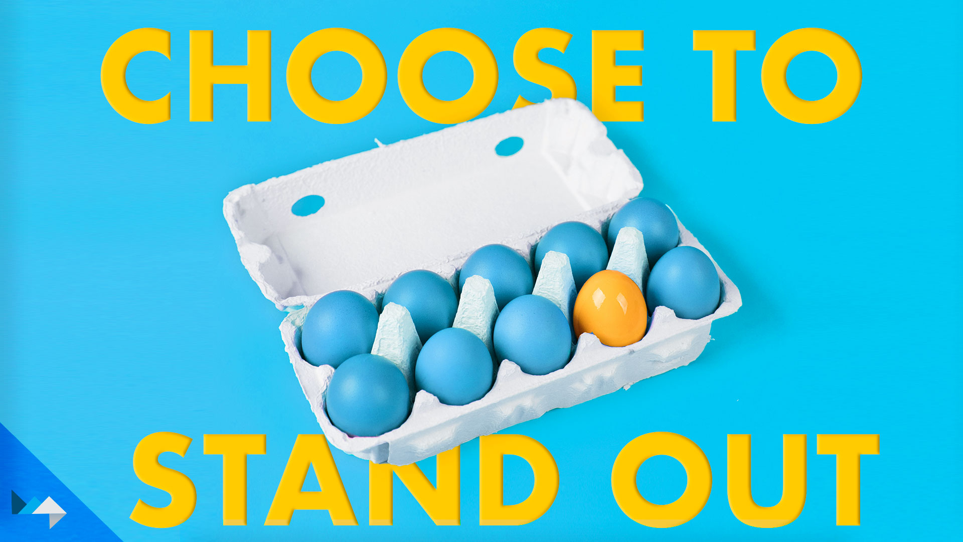 Choose to Stand Out – No Niche Needed