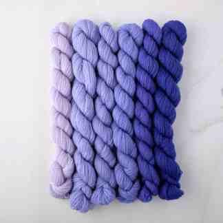 Appletons Hyacinth 891 – 896 - 8-