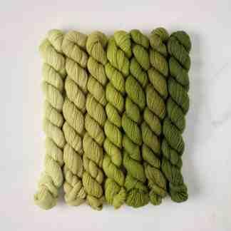 Appletons Grass Green 251a - 251 – 256 5.6