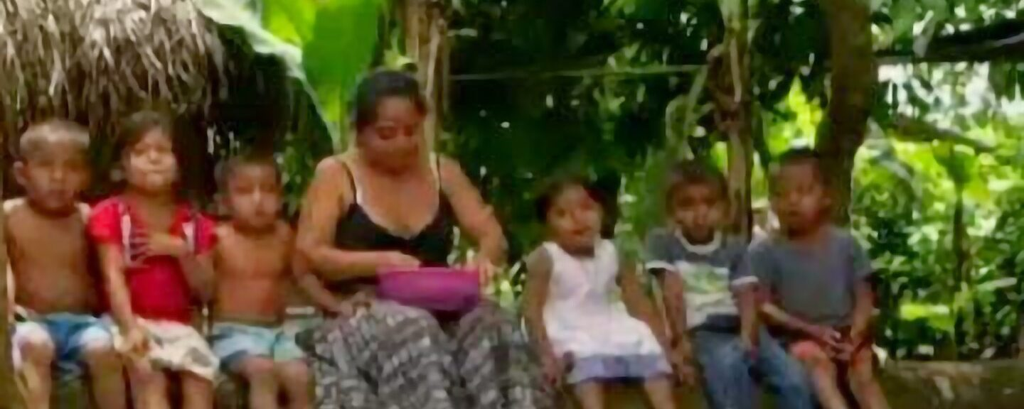 Thousands Displaced by Guatemala's Land Grabs