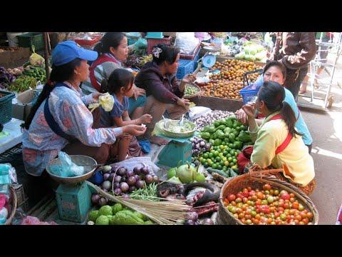 Ncig Teb Chaws Toj Siab : Mus Saib Hmoob Sab Nyob Phou Khoun