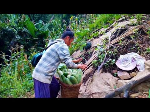 Hmong Rural life in Laos 6 / 21 / 2019