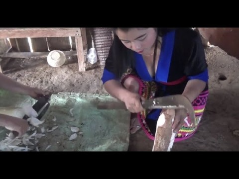 Beautiful Hmong Highland Girls and How They Live Off the Land in Laos