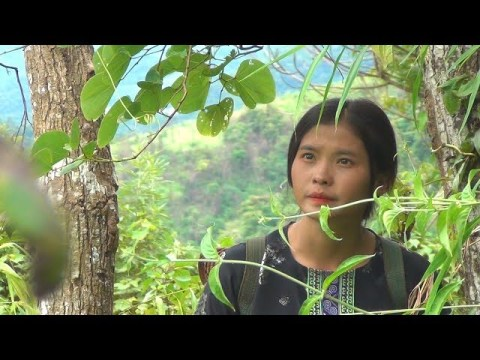 Pa Yeng work with hmong lifestyle and show how to be a hmong girl  it is eazy