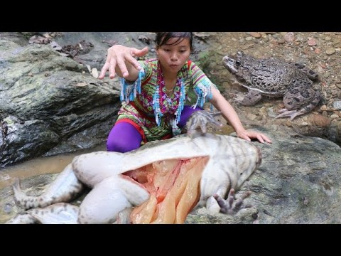 Hmong's survival skills - Catch and bake the delicious frog meat - Catch Big a frog