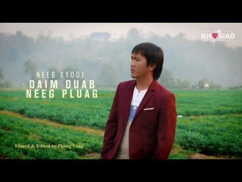 Daim Duab Neeg Pluag - Neeb Xyooj (Official Video) Nkauj Hmoob Tawm Tshiab 2020