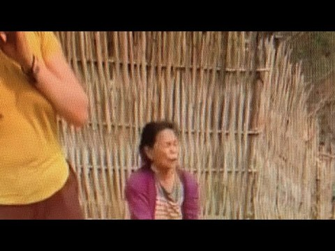 HMOOVNTUJ Cem Nom Tswv Hmong Nplog Liab