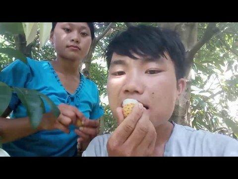 Hmoob toj siab mus noj txiv chaw qis_Yam zoov ham hmong vn