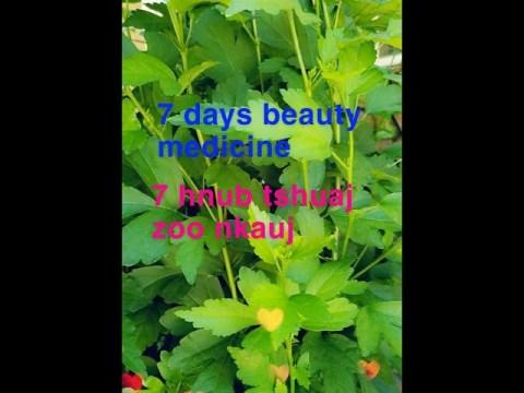 Hmong green beauty medicine #1/Hmoob cov tshuaj ntsuab zoo nkauj #1