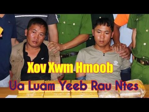 Xov Xwm Tshiab | Hmoob Ua Luam Yeeb Raug Tub Ceev Xwm Ntes Tau - Xov Xwm Hmoob Nyab Laj