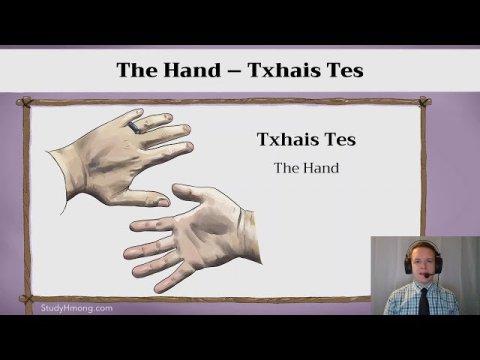 Learn Hmong - The Hand - Txhais Tes