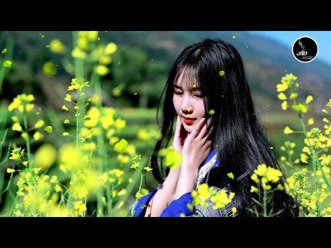 เพลงม้งเพราะๆ2020 (hmong music collection 1M view)