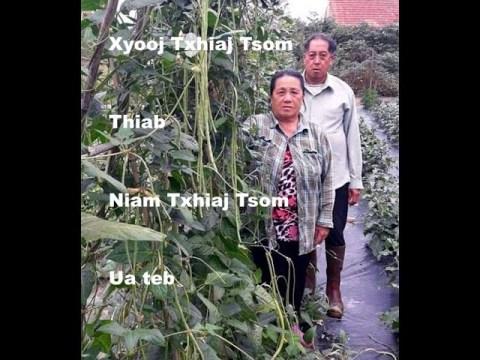 hmong fab kis ua teb 3 - Xyooj Txhiaj Tsom thiab niam Txhiaj Tsom (FRANCE)