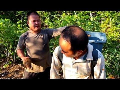 D'Indochine à la Guyane, les Hmong ont trouvé leur terre