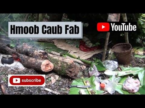 Hmoob Caub Fab (Dab Neeg Hmoob Caub Fab) - By Hmong Internaltional Talks