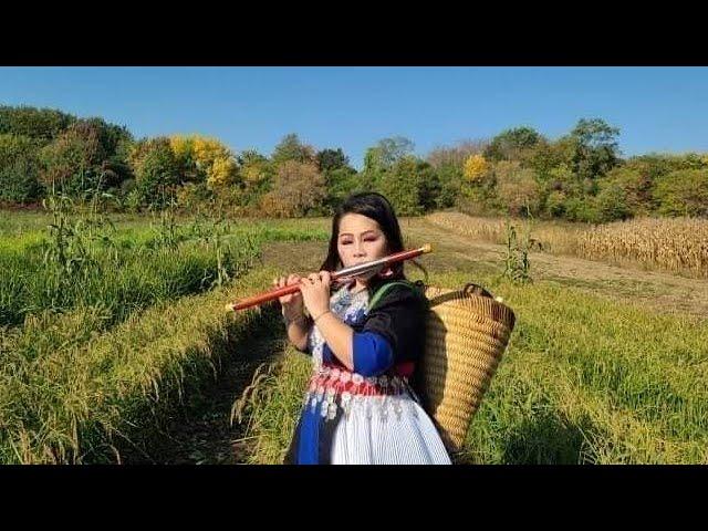 Top 10 Dizi  Flute..Peb yog Hmong ib yam..Nkauj Hmong Meskas tshuab raj kho siab zib tim   hav npej