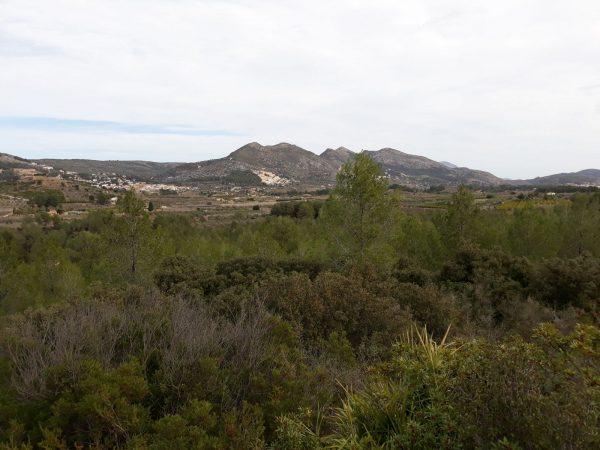 Alcalali Valley