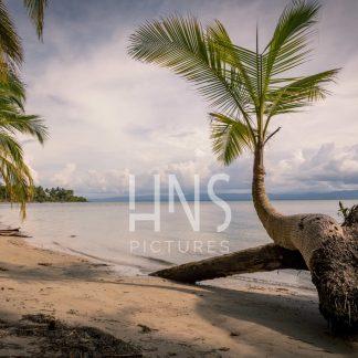 Panama Bocas del Toro Drago Beach