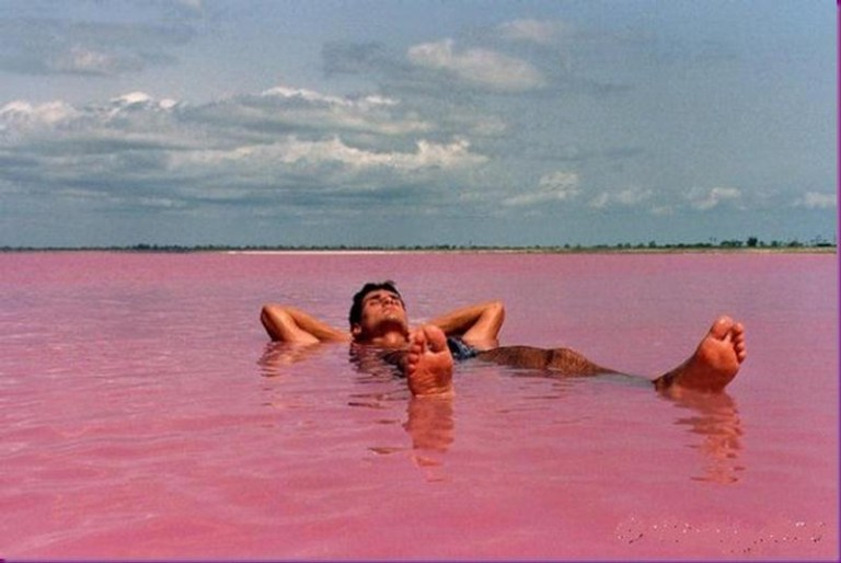Picture of Pink Water Lake