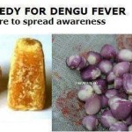 Picture about Eating Jaggery with Raw Small Onion Cures Dengue