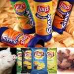 Picture about Pig Fat in Lays and other Consumer Products