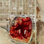 Picture: Aerial Shot of Texan Industrial Beef Farm and Waste Lagoon