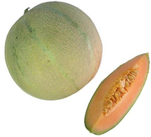 Picture of Red Moon Melon