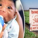 Picture Suggesting Not Zika Virus, Monsanto's Insecticide Pyriproxyfen Behind Rising Microcephaly Cases