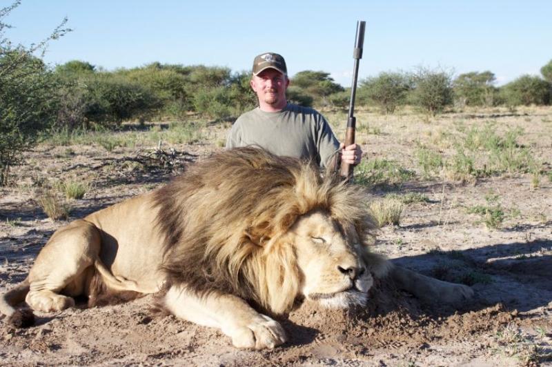 Original picture of dead lion in Kalahari Desert, SA
