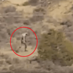 Picture about Strange Alien Creature Filmed in the Portuguese Desert