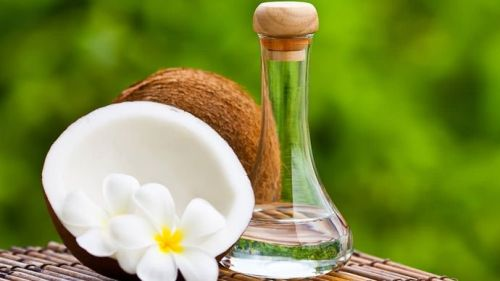 Image about Apply Coconut Oil to Prevent Dengue