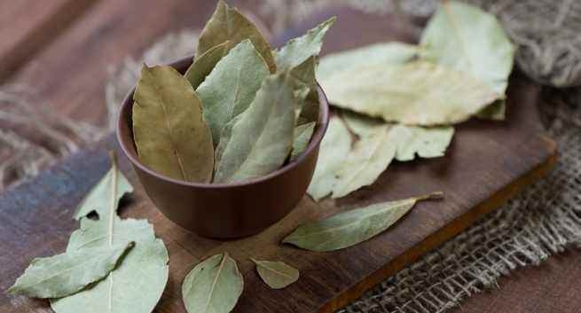 Cure Diabetes Taking Bay Leaves Preparation Daily: Facts