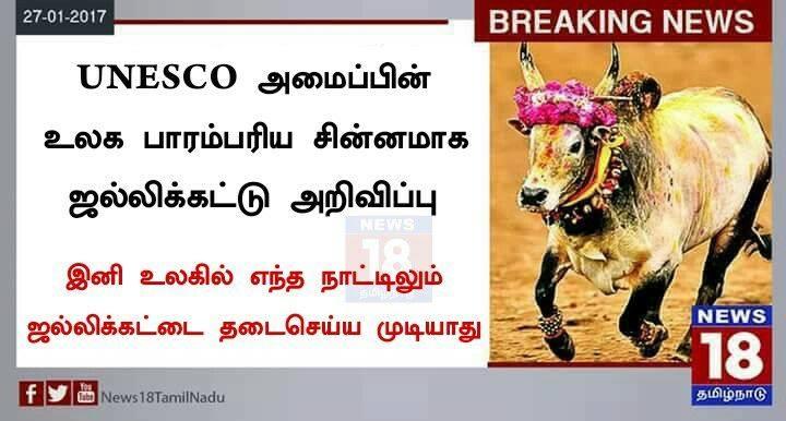Picture Suggesting UNESCO Declares Jallikattu Bull as World Heritage Symbol