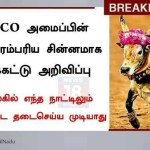 Picture Suggesting UNESCO Declares Jallikattu Bull as World Heritage Symbol