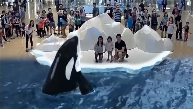 Video of 7D Park in Japan to Touch, Feel and Smell the Animals: Hoax