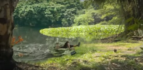 Picture about Crocodile Swallows Up a Girl Taking Photograph by Lake, Video