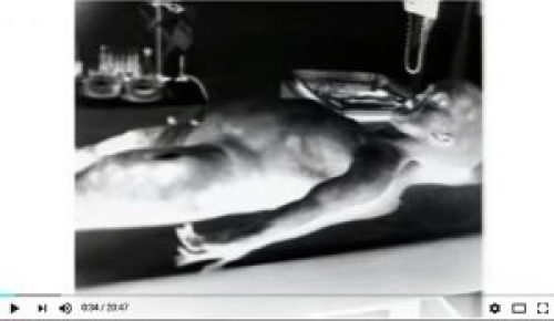 Screenshot of negative image from Alien autopsy hoax video